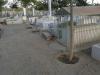 04-19850706-graves-shot-2