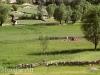 bamyan-dara-chast-valley-in-yakawlang