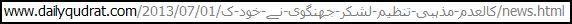 lej-balkhi-chowk-06302013-1